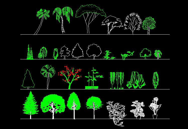 园林立面植物图例